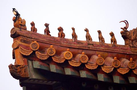 图文-奥运城市掠影之北京 紫禁城一角掠影