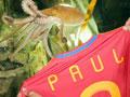 视频-西班牙官员膜拜章鱼保罗 赠斗牛士球衣表心意