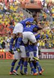 巴西队欢庆