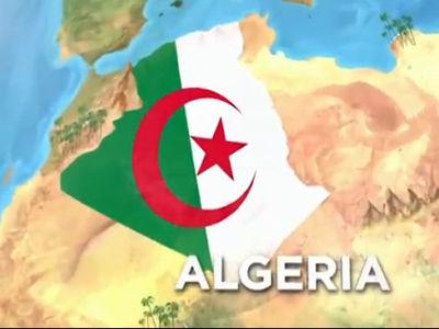 视频-世界杯32强队报之阿尔及利亚 北非骑兵盼奇迹