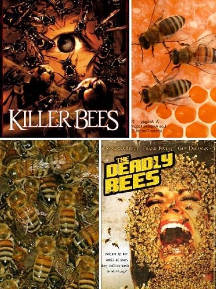 十大臭名昭著入侵物种:杀人蜂比欧洲蜜蜂攻击性更强,生命力也更强