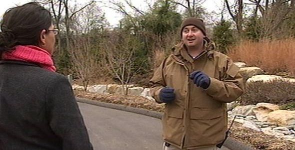 路易斯维尔动物园的克里特斯认为,这只神秘动物应该是一只浣熊或者一条狗。