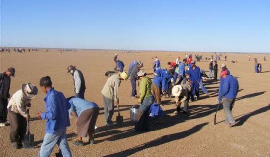努力工作:去年11月份,当地志愿者们开始冒着烈日清理将要用于测试的赛车跑道。