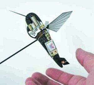 """""""纳米蜂鸟""""体型虽小,但功能相当完备。"""