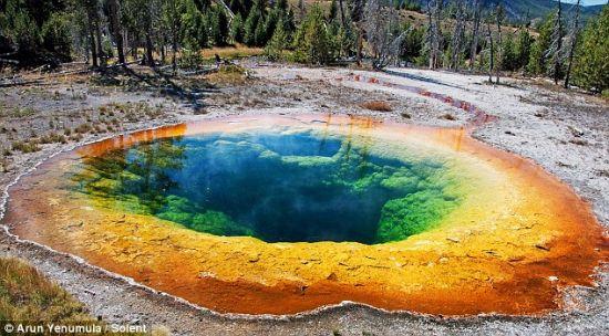 几十年来,游客一直往怀俄明州牵牛花池里扔硬币,祈求好运。大量硬币的存在阻塞了热喷口,降低池内温度同时导致发生化学反应。