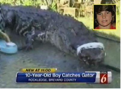 男童钓到鳄鱼拖回家