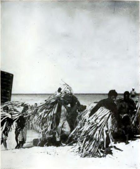 1946年美军在马绍尔群岛比基尼环礁上进行的一系列核试验