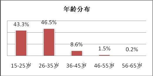 手机上网用户年龄分布