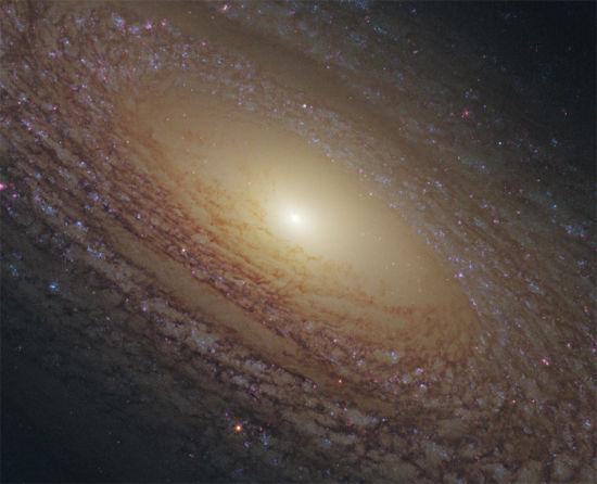 宇宙这么大,如果只有我们,那是不是太浪费地方了?但是既然宇宙中还存在着其他的生命,那么它们在哪儿呢?