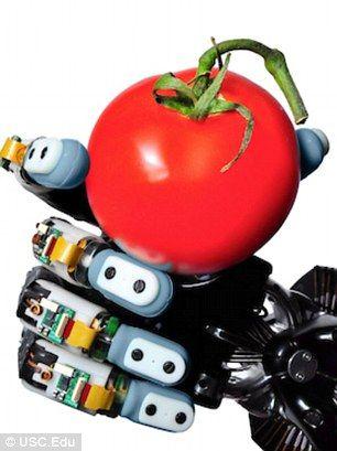 一个番茄?这种名为BioTac的传感器只用感觉就能猜测物体,而且这种能力已超过人手。