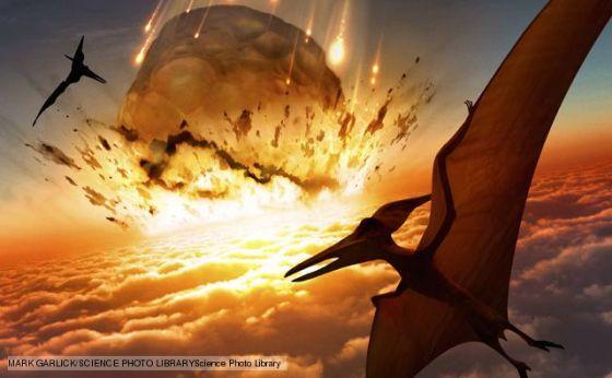 白垩纪 - 第三纪生物大灭绝(K/T灭绝):6500万年前