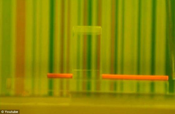 美科學家展示隱身技術:方解石彎曲光線(視頻+多圖)