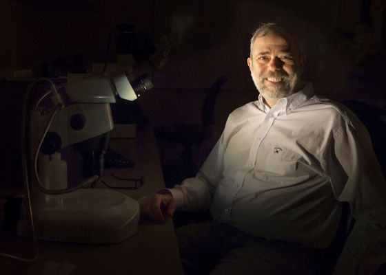 主持这样研究工作的萨尔教授,一位来自美国布朗大学的地质学家。他和研究表明月球上的水分与地球上的水分可能拥有共同的起源