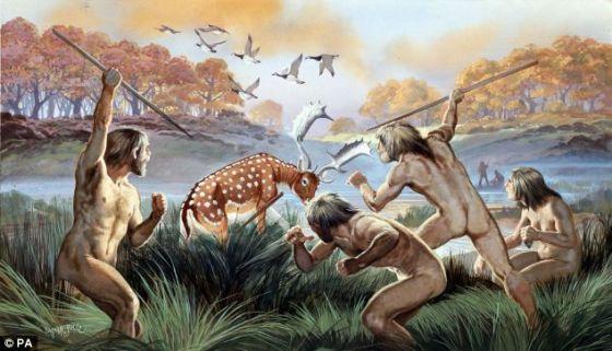 研究称新发现化石有助解开人类进化出双手之谜
