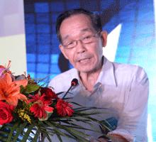 中国电子视像行业协会副会长 林元芳