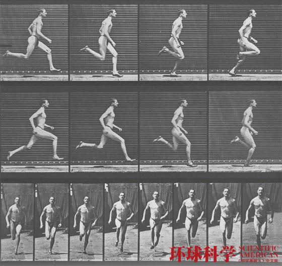 运动改造人体:提升大脑功能益处远超想象