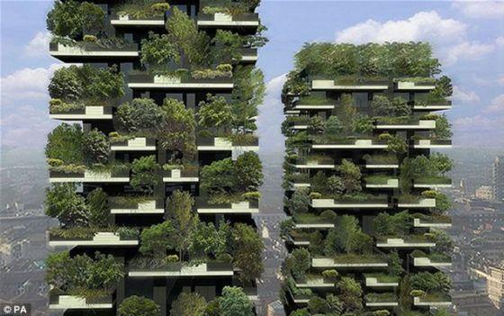 这项研究表明,覆盖植物的高楼城区可能有助于增加居民的平均寿命,减少因疾病不能工作的几率。
