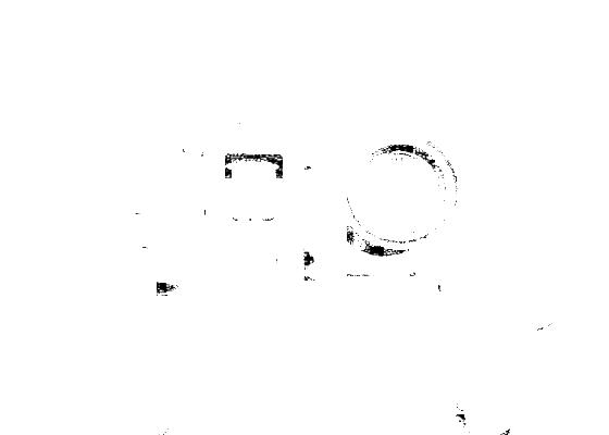 BeastGrip镜头适配器