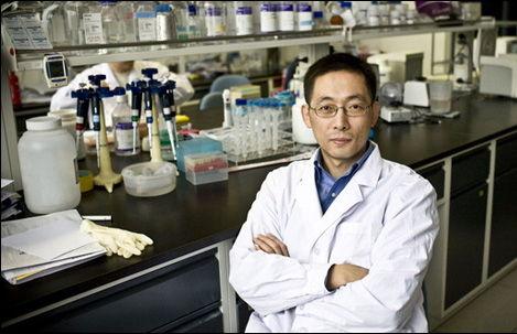 老年痴呆症致病蛋白三维结构