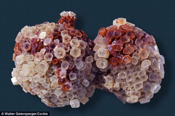 耶鲁大学科学家发现古老地下生命证据。他们在最初位于地下12英里的岩石中发现一种叫文石的矿物。一种特殊的碳同位素混合物意味着这种文石来自微生物制造的地下甲烷。