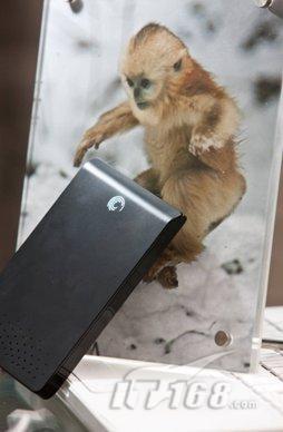 奚志农:希捷硬盘备份保护珍稀动物影像
