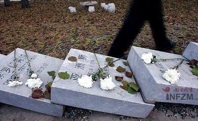 揭秘灭绝野生动物墓地(组图)