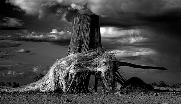 感人的力量连线杂志十大获奖黑白照片