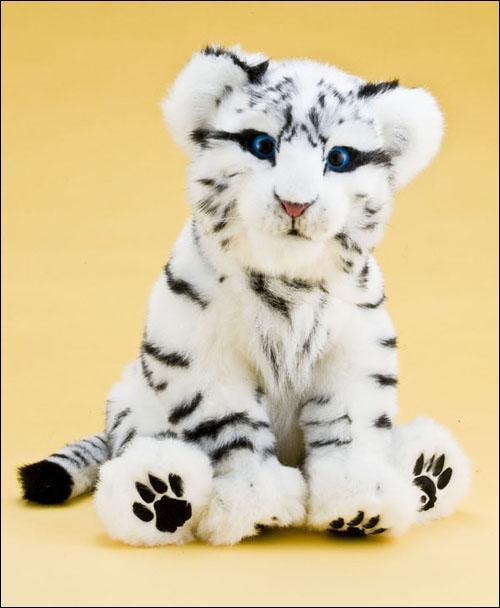 ccp动物宝宝系列电子宠物之白虎宝宝