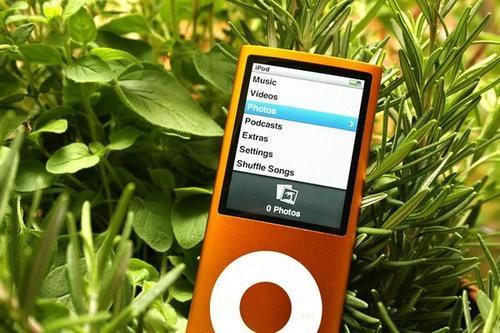 苹果iPod nano 4小涨 8GB售价1050元