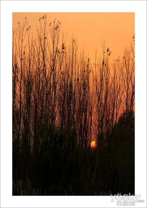 爱在黄昏日落时 用光影留住那些感动瞬间(3)