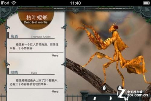 app今日免费:超精致百科图书昆虫动物园