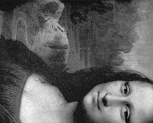 蒙娜丽莎右边的猴子