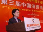 信息产业部办公厅副主任刘红旗