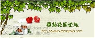 """从洪磊被捕看""""番茄花园""""恶行(2)"""