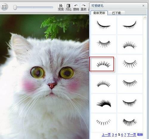 怎么样,眼睛变大,并添加了睫毛和腮红的猫咪是不是很可爱,很时尚?