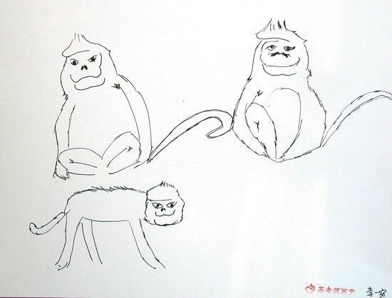 幼儿简笔画情景图片; 滇金丝猴月儿童绘画比赛优秀作