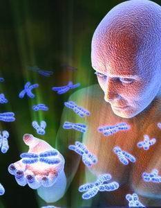 基因重组新技术可能延长人寿命至800岁