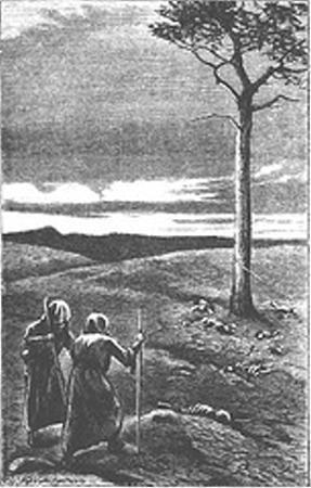 英杂志公布七大科学骗局:树上长意大利面(2)