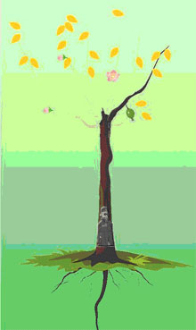 5、解释:黄叶多,宜见花,花多感情丰富,根深可家庭幸福稳定