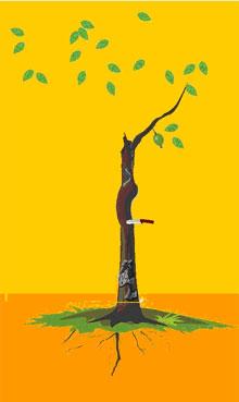 1、解释:刀子虫子齐现,有红绿叶就可得幸福,根浅者婚易动荡,有刀无虫,夫妻不和,有虫无刀,分道扬镳