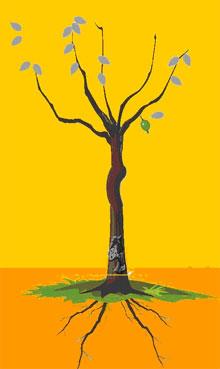 解释:树枝四支以上,遇黑灰叶不是密果,一生受感情所累,受夫欺压