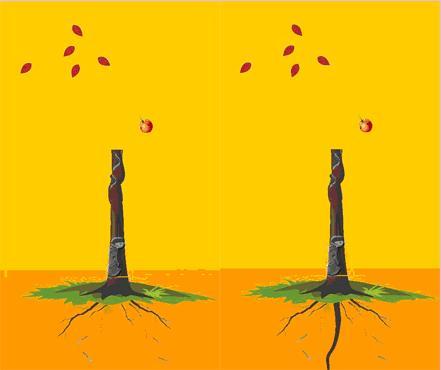 解释:红绿叶少,见虫子,根浅者注意家庭动荡,根深者夫妻受克体弱