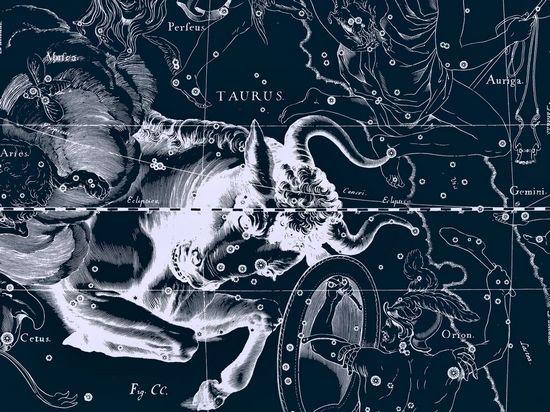 金牛座--从拥有中寻找自我(图片来源于网络)