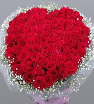 狮子座的情人节专属玫瑰