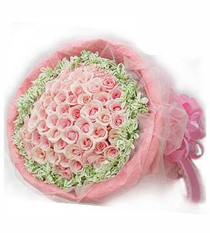 巨蟹座的情人节专属玫瑰