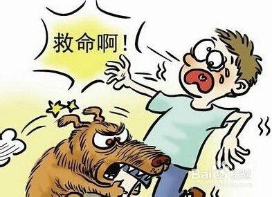 怎保护孩不受狗的攻击?