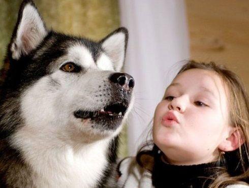 可爱小孩抱宠物的头像