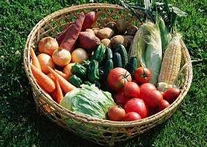 用菠菜补铁越吃越缺