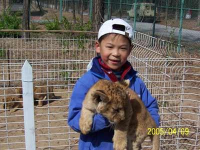 儿童和动物合影