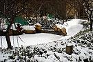 雪后美丽的居民小区